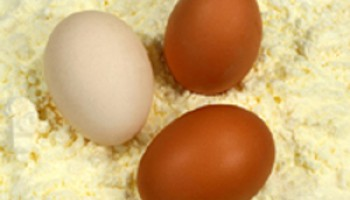 Shell and Liquid Eggs Safety Standards Needs to be Improved